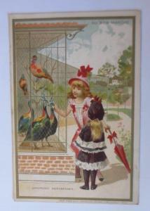 Kaufmannsbilder, Chocolat Guerin-Boutron, Kinder, Mode, Vogel,   1910 ♥