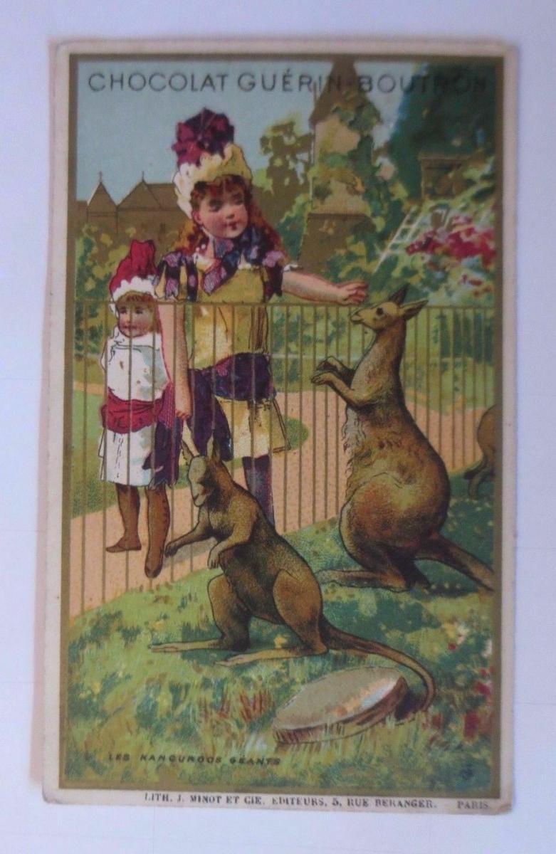 Kaufmannsbilder, Guerin-Boutron Chocolat, Kinder, Känguru 1910 ♥ 0