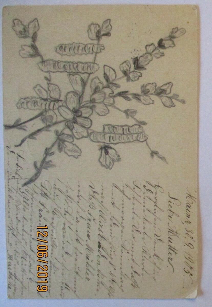 D.Reich handgemalte Ganzsache Ortskarte Mainz 1905 (39354) 0