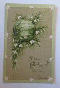Namenstag, Blumen, Schneeglöckchen,  1909, Prägekarte ♥ (28721)