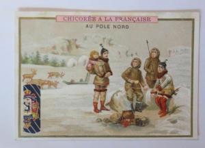 Kaufmannsbilder, Chicoree a la Francaise, Nord Pol,   1910 ♥