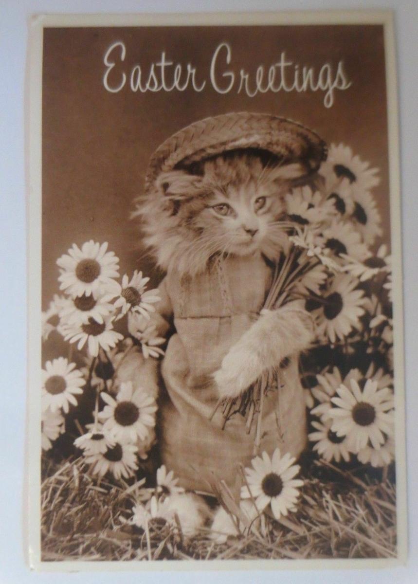 Personifiziert, Katzen, Ostern,  Blumen, 1985 ♥ 0