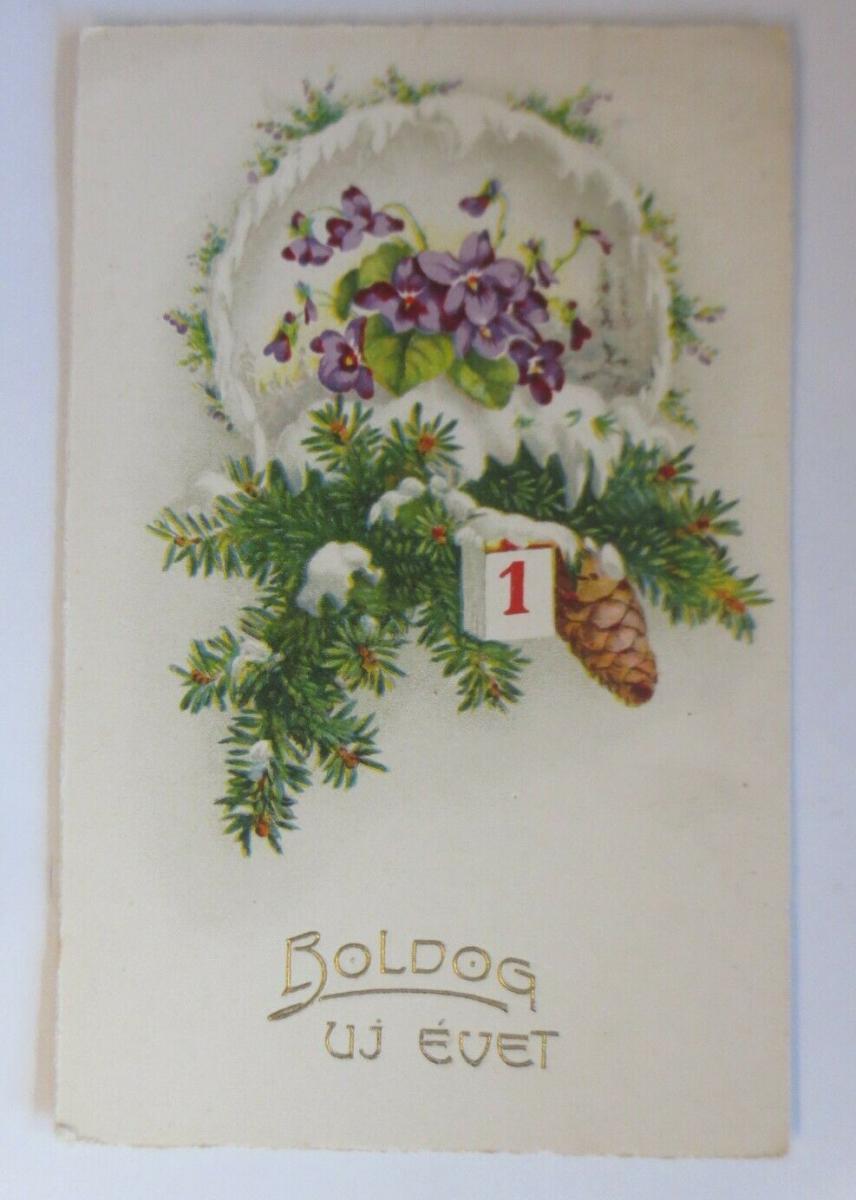 Neujahr,  Blumen, Veilchen, Tannenzapfen,  1928   ♥ (58689) 0