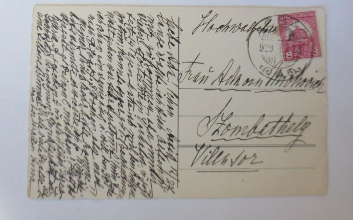 Neujahr,  Blumen, Veilchen, Tannenzapfen,  1928   ♥ (58689) 1