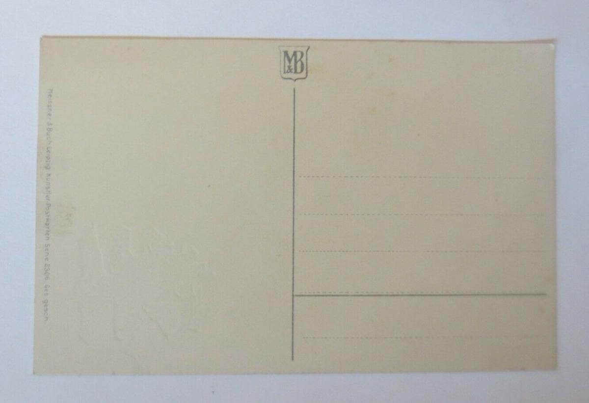 Neujahr, Tannenzweige, Kleeblatt,  1930, Meissner & Buch  ♥ (56057) 1
