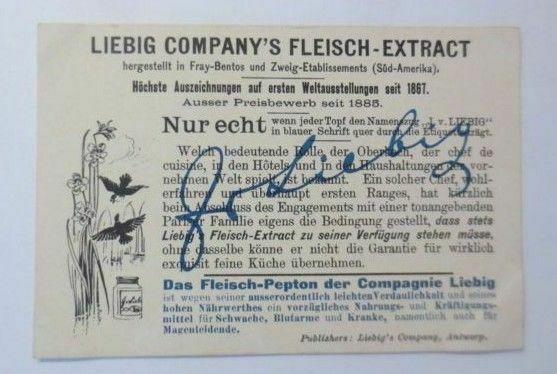 Liebig, Serie 384, Vögel u. Blumen, Jako oder Graupapagei, Orchideen ♥ 1