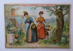 Kaufmannsbilder, Liebig, Wo ist der Gärtner ♥ (37173)
