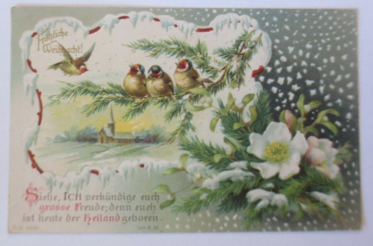 Weihnachten, Vogel, Christrosen, Kirche, Spruch,  1907 ♥ (7429) 0
