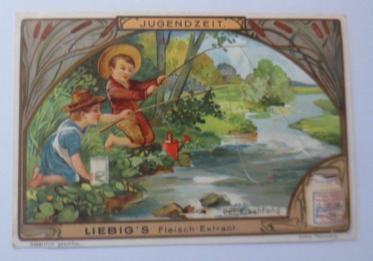 Liebig, Serie 597,  Der Fischfang  ♥ 0