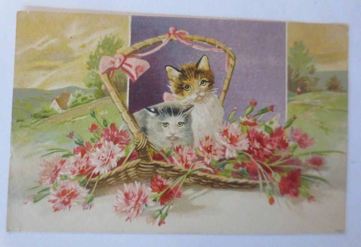 Katzen, Korb, Blumen, Nelken,   1909, Prägekarte   ♥ 0