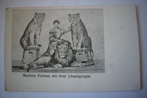 Ak Madame Fichtner mit ihrer Löwengruppe um 1900 nicht gelaufen