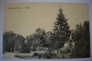 Ak Breslau, Wroclaw, Scheitnig, Diana, 1910 gelaufen