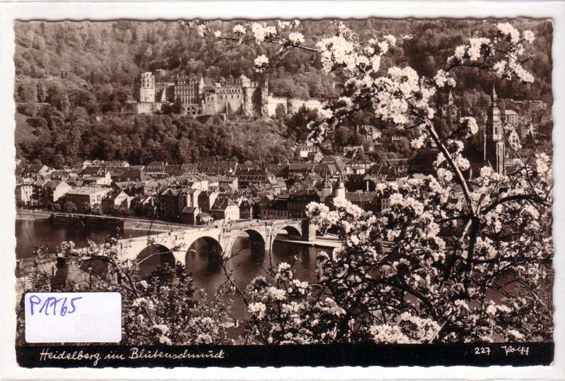 AK Heidelberg im Blütenschmuck