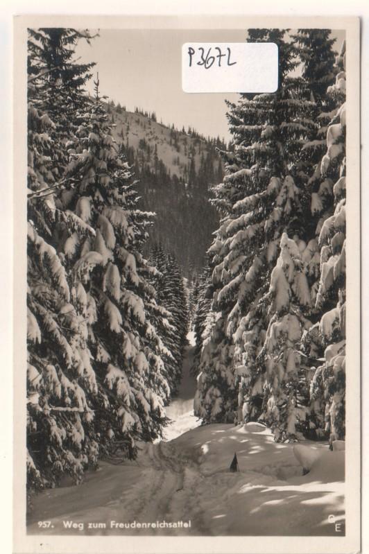 Weg zum Freudenreichsattel Schnee Winterlandschaft