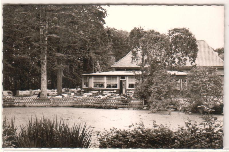 AK Eutin Uklei-See Ukleisee Forsthaus Holst. Schweiz