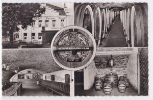 AK Mayschoß Mayschosser Winzer-Verein 1955 Mehrbild Weinkeller ungelaufen