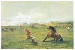 Sammelbild Europa-Bilderdienst Serie Unter Indianern Nr. 2 Indianer - Sammelbild - Europa-Bilderdienst - Serie: Unter Indianern Nr. 2 Wildpferdfang