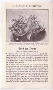 Werbeblatt vom Verlag Herder in Freiburg für Johannes Kirschweng, Trost der Dinge (Vorderseite) und weitere Werke (Rückseite) mit Kritiken aus den 1930er Jahren