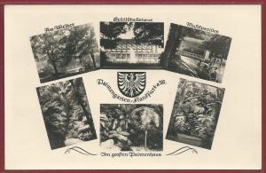 AK Frankfurt a. M., Mehrbildkarte 1955, Palmengarten, Musikpavillon, Gesellschaftshaus, ungelaufen