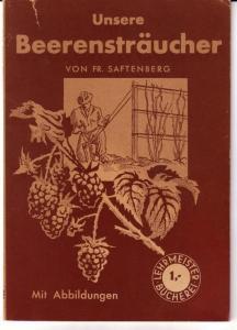 Unsere Beerensträucher von Fr. Saftenberg. Neubearbeitet von Fritz Hertel / Lehrmeister-Bücherei Nr. 231 - Mit 24 Abbildungen