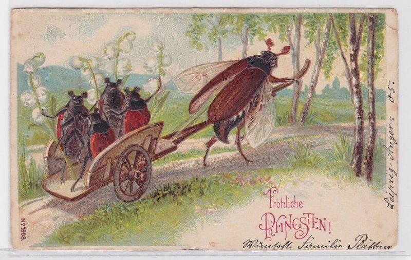 28867 Glückwunsch AK Fröhliche Pfingsten, Maikäfer zieht Wagen 1905