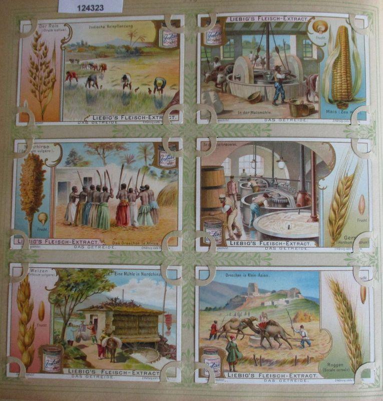 C124323 Liebigbilder Serie Nr. 593 Das Getreide 1904
