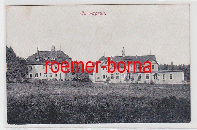 72991 Ak Carolagrün Ortsansicht um 1910 0