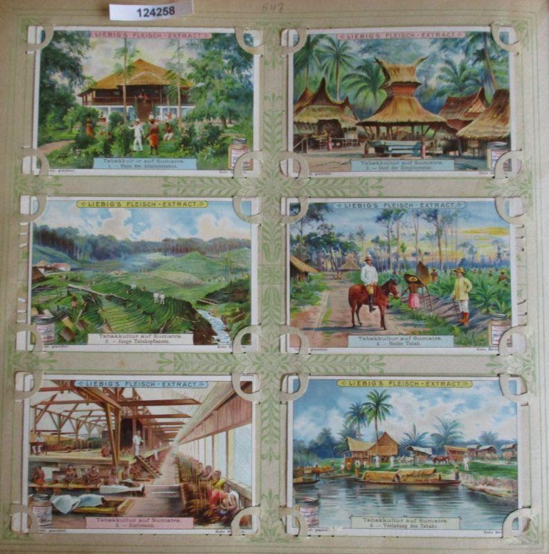 C124258 Liebigbilder Serie Nr. 547 Tabakkultur auf Sumatra 1902