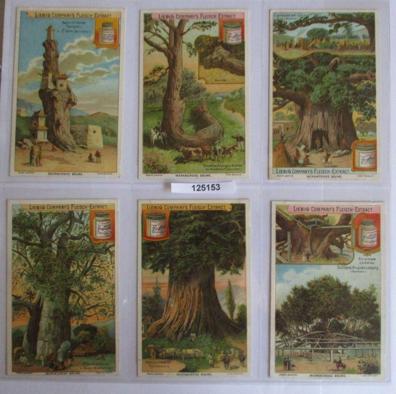 B125153 Liebigbilder Serie Nr. 539 Merkwürdige Bäume I 1902