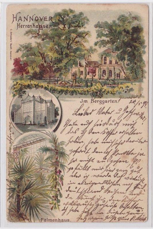 79918 Ak Lithographie Hannover Herrenhausen im Berggarten, Palmenhaus 1898