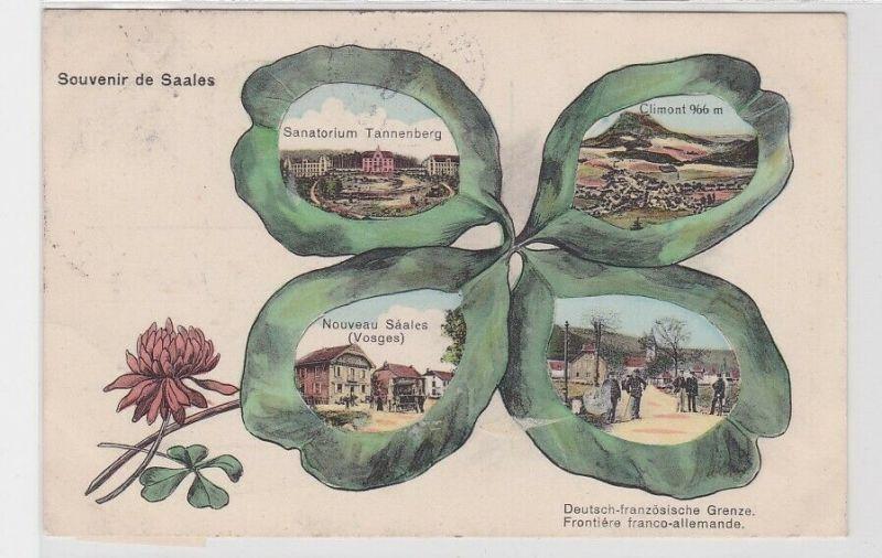 11691 Kleeblatt Mehrbild AK Souvenir de Saales - Sanatorium Tannenberg & Vogesen