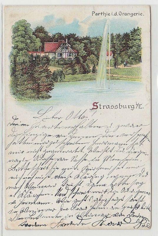 68545 Ak Lithographie Strassburg i.E. Partie in der Orangerie 1900