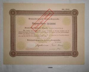 1200 Mark Aktie Braunschweigische Kohlen-Bergwerke Helmstedt 19.5.1922 (128989)