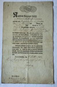 Seltenes sächsisches Dokument Freischein Befreiungskriege Dresden 1814 (103787)