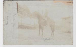 85636 Foto AK Bornaer Soldat Karabiner mit Lanze auf Pferd 1901