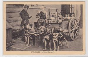 94411 Feldpost Ak BruxellesBrüssel Laitiere Flamande Hundefuhrwerk 1916