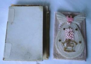 Wunderbarer Taufbrief mit altem Taufbildchen 1893 im Karton (119494)