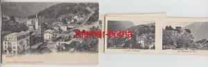 11164 Leporello Ak Salvan Schweiz Ortsansicht um 1900