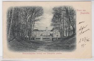 87938 AK Gruss aus Neustrelitz - Grossherzogliches Schloss vom Thiergarten aus