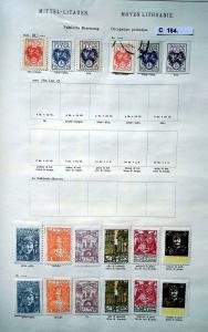 Seltene Briefmarkensammlung Mittel Litauen Polnische Besetzung 1920/1921