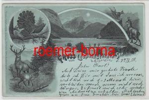 75762 Ak Gruss vom Leopoldsteiner See b. Eisenerz 1901