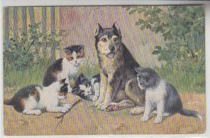 68053 Kitsch Ak Katzen Babys spielen mit Hund um 1910