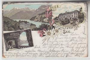 67166 Ak Lithographie Gruss vom Vierwaldstätter See 1909