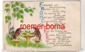 81255 geprägte Ak mit Reim zu Pfingsten, Maikäfer beim Picknick 1910