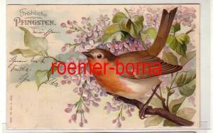 81260 geprägte Ak Fröhliche Pfingsten. Rotkehlchen in blühendem Flieder 1905
