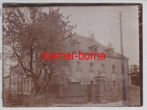 76945 Original Foto Kiebitz Totalansicht um 1930
