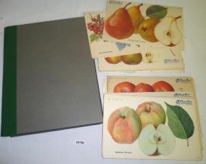 154 Bildtafeln überwiegend Obsttafel der Illustrierten Wochenzeitung für Garten