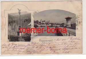38782 Ak Rapperswyl Rapperswil Schweiz Palm-Denkmal 1900