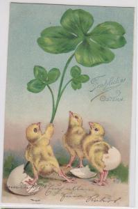 82115 Glückwunsch AK Fröhliche Ostern - 3 Küken m. vierblättrigem Kleeblatt 1903