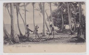 87245 Ak Fiji Costal Scene Kokusnussernte 1907